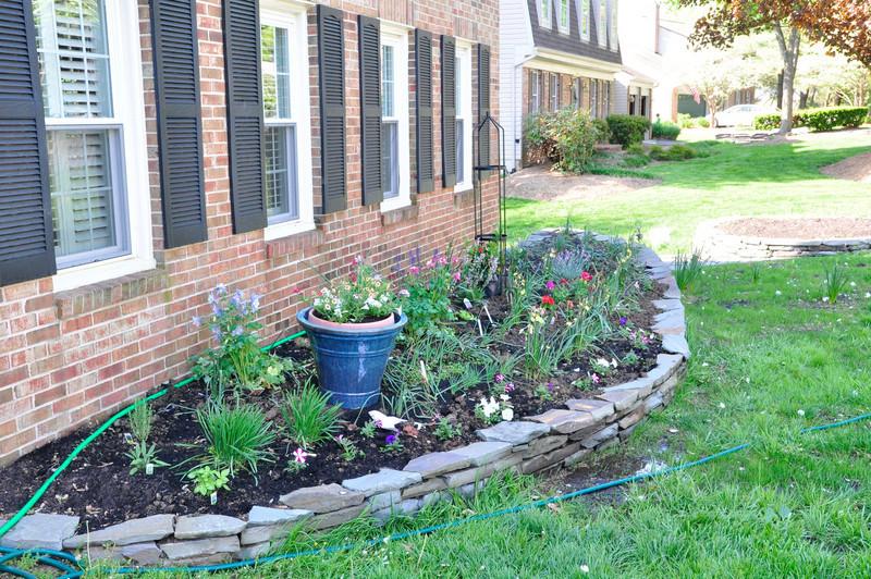 garden-0018.jpg