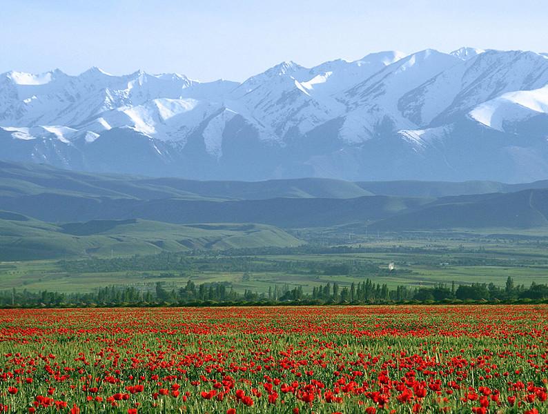 Beautiful sceneries approaching Bishkek...
