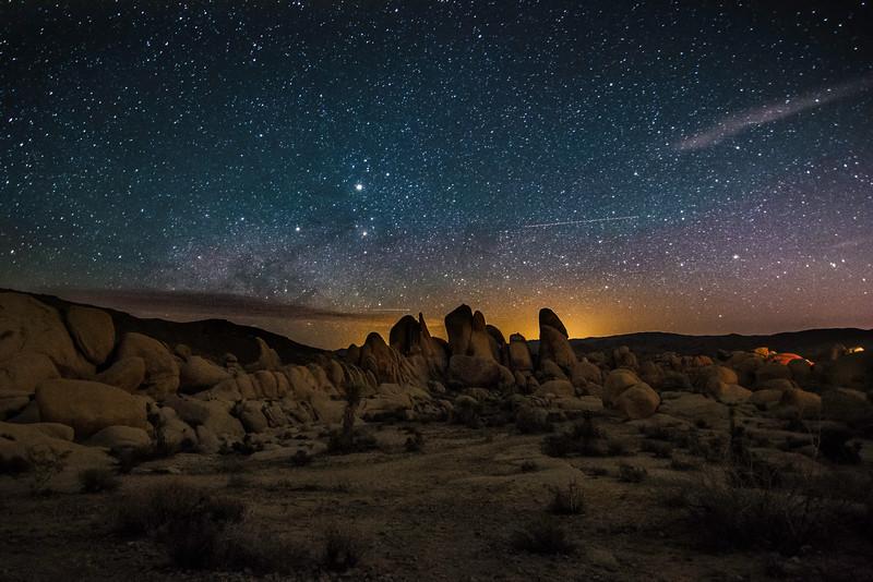 Joshua Tree Stars.jpg