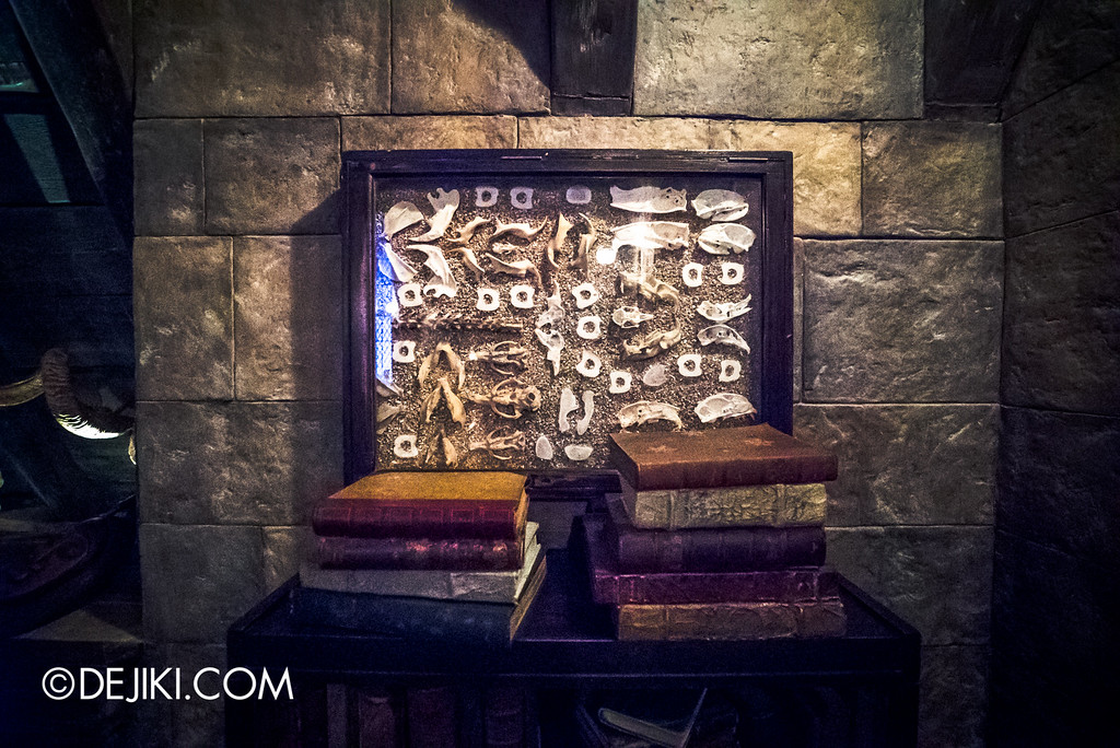 Universal Studios Japan - Harry Potter and the Forbidden Journey / Hogwarts Castle Walk Tour - Defence against the Dark Arts classroom, bones