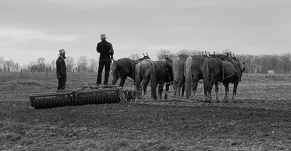 Talking In The Field