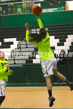 Section IX Class D Girls Basketball Championships