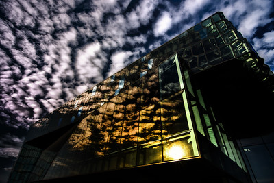 Harpa Reflections