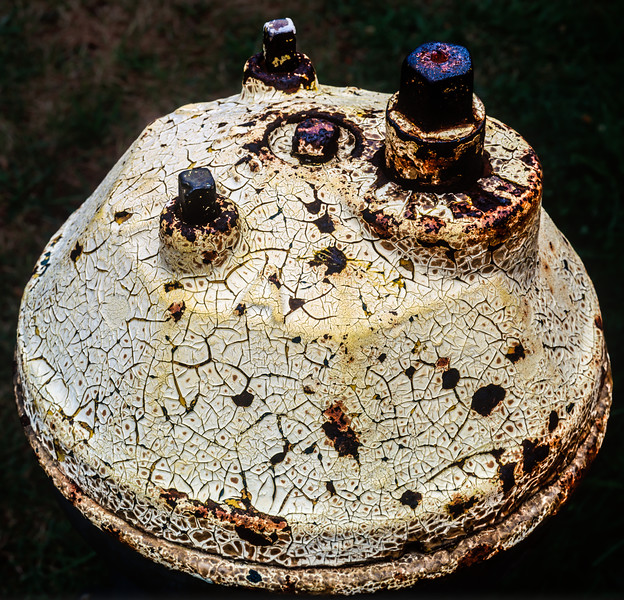 Fire Hydrant, Seattle, Washington, 1991