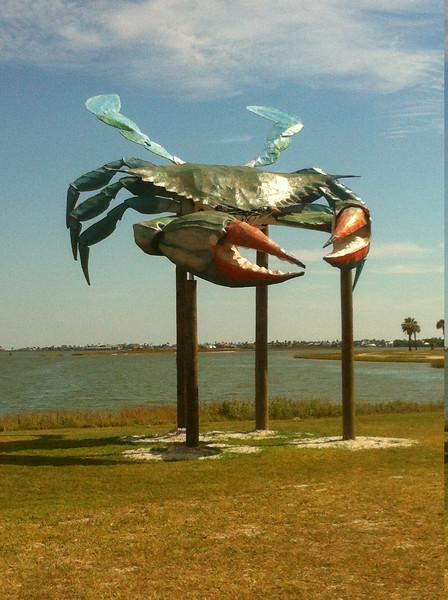 rockport crab.JPG
