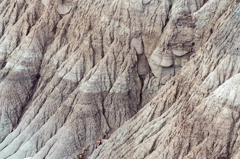 20090531 Arizona Petrified Forest 019.jpg