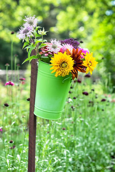 a bucket full of flowers