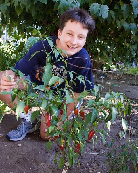 David enjoying his super-hot jalapeno plant.