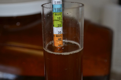 Mr. Beer Christmas - Mr Grinch Ale - 2012-07-15