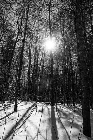 2017 - Snowshoeing with Ubi