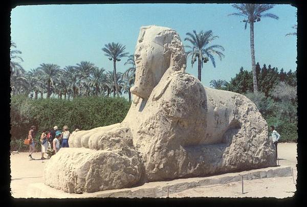 010_Sakkarah_Sphinx_entoure_de_palmiers.jpg