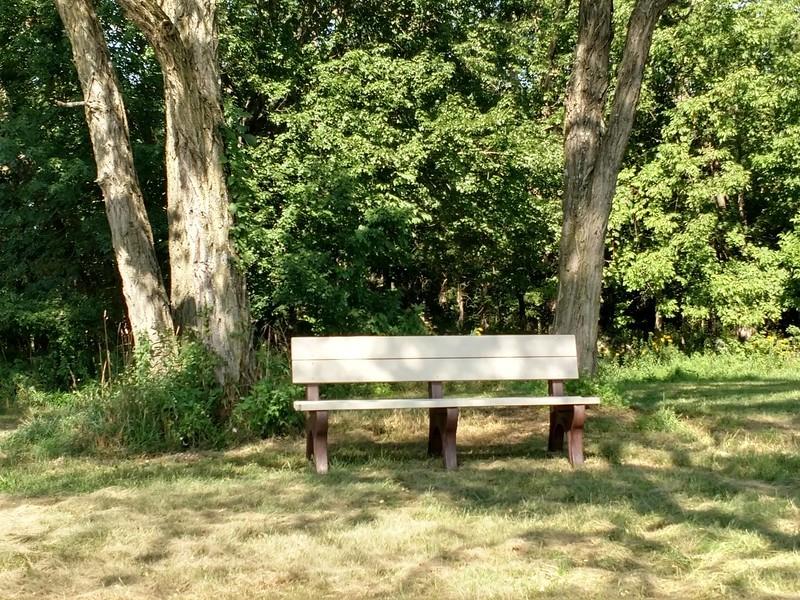 Benches 2.jpg