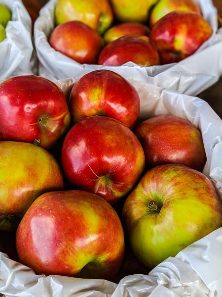 nova scotia apples.jpg
