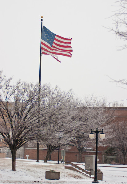 Flag at City Hall
