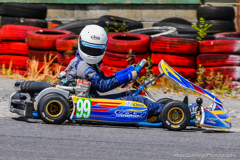 Southern Karting Club - IRL Plate 2016