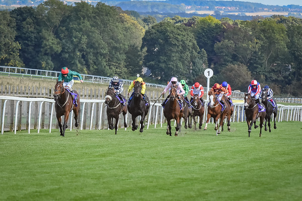 The EBF Stallions/Pony Racing Here On Sunday Maiden Stakes