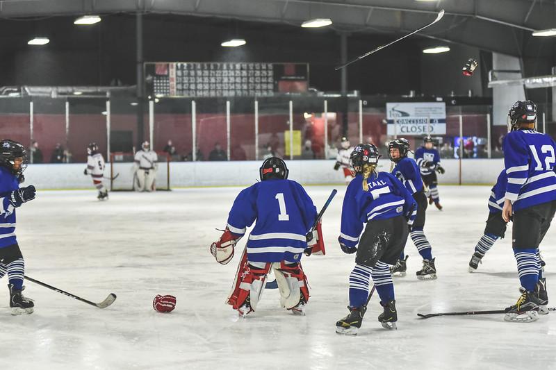 Leafs-127.jpg