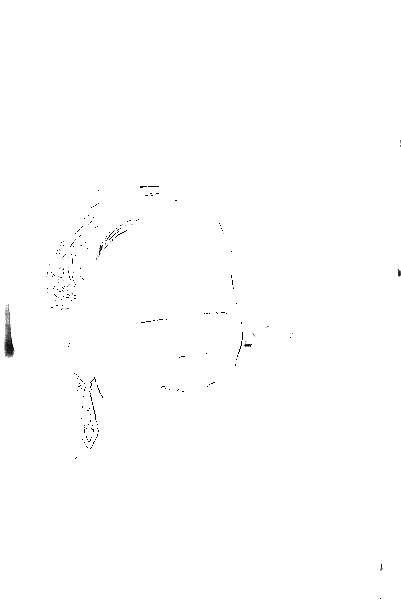 DSC09343.png