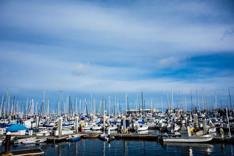 2012-12-04_Scuba_Monterey_Roeder_0026.jpg