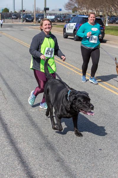 Richmond Spca Dog Jog 2018-706.jpg
