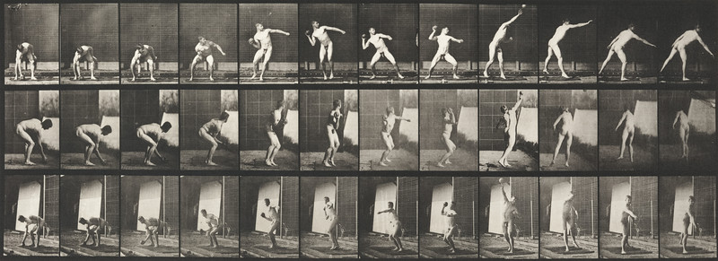 Nude man putting the shot (Animal Locomotion, 1887, plate 310)