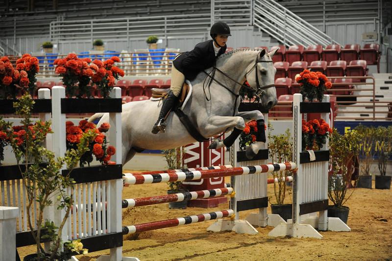 Horse show (76).jpg