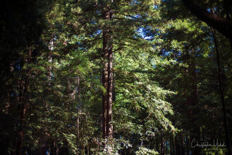 Oct052013_camping_0515.jpg