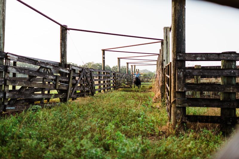 Barthle Cattle-2 (42 of 102).jpg