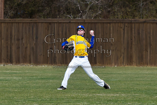 Mantachie and Booneville at Saltillo 2-16-13