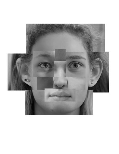 face print 2.jpg