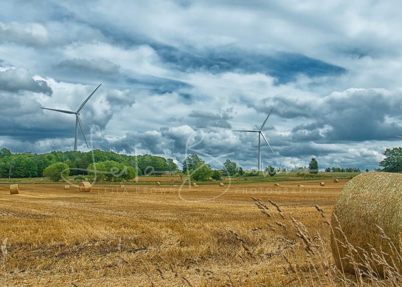 Windmill hay bail.jpg