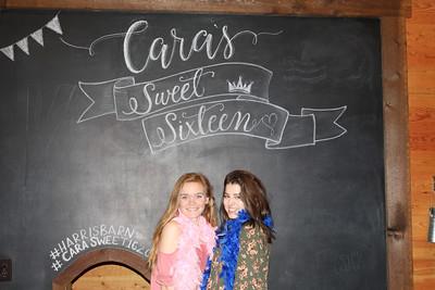Cara's Sweet 16