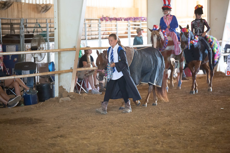 HorseCostume-15.jpg