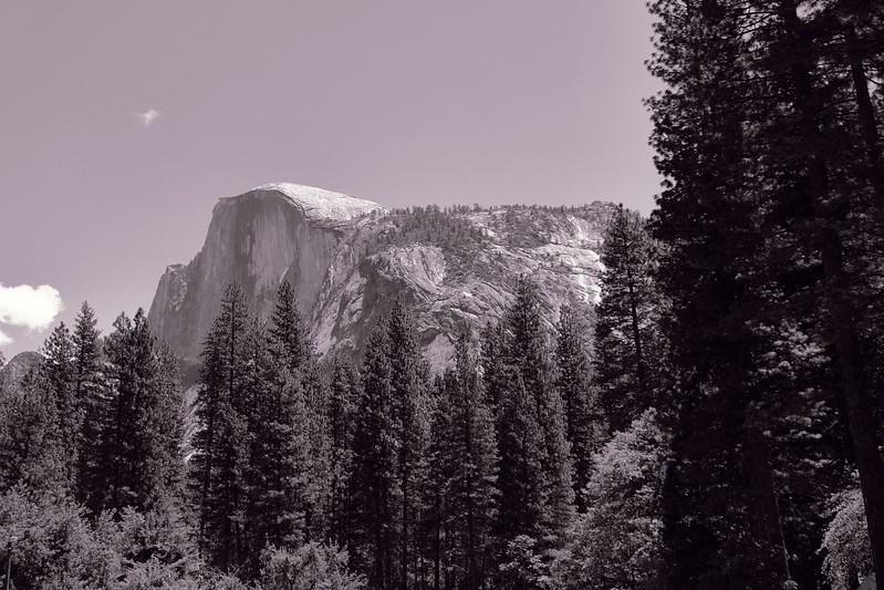 California Day 7 Yosemite 06-01-2017 85.jpg