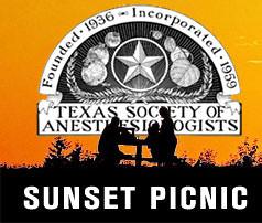 TSA Sunset Picnic