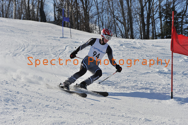 OFSAA Alpine 2011 Level I GS Gallery II