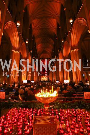 Concert for Unity | Tony Powell