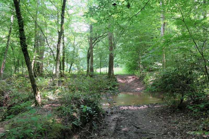 Lee Falls Trail