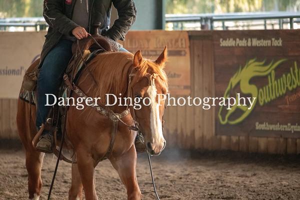 SCRCHA Cow Horse Kickoff Jan 2019