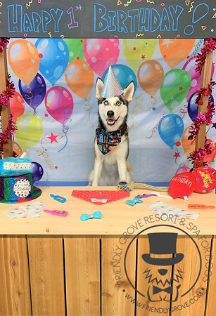 Kira's first birthday!