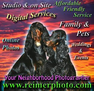 Pet Junction Pet Care Fair