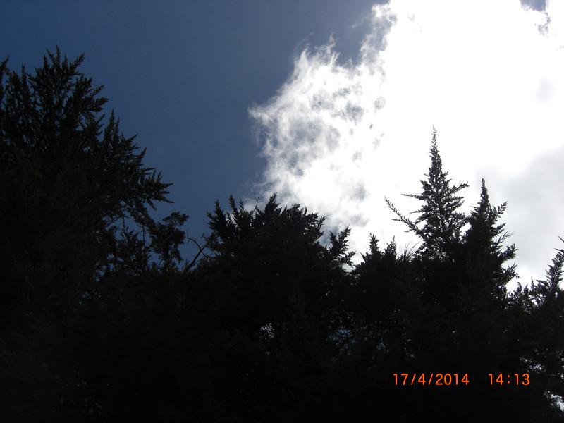 2014-04-17 14.13.40.jpg