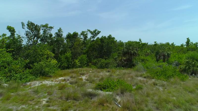 Aerial Marco Island Tigertail Beach south Point