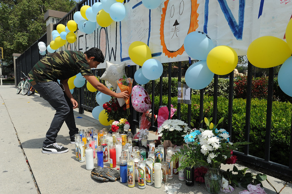 . Jorge Padilla,17, places flowers at the memorial of his classmate. Students at El Monte High School brought flowers, candles and other items in remembering Adrian Castro, a Senior student who was killed in bus crash in Northern California that took the lives of 10 people. El Monte, CA. 4/13/2014(Photo by John McCoy / Los Angeles Daily News)