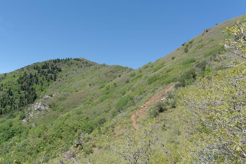 Gandeur Peak Trail (14).jpg