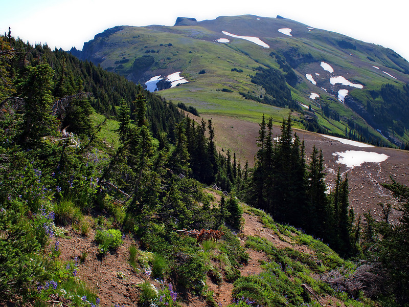 Looking towards Banshee Peak from just the other side of Panhandle Gap. It looks flat and easy, but there is significant elevation gain to come (to 7400 ft.)