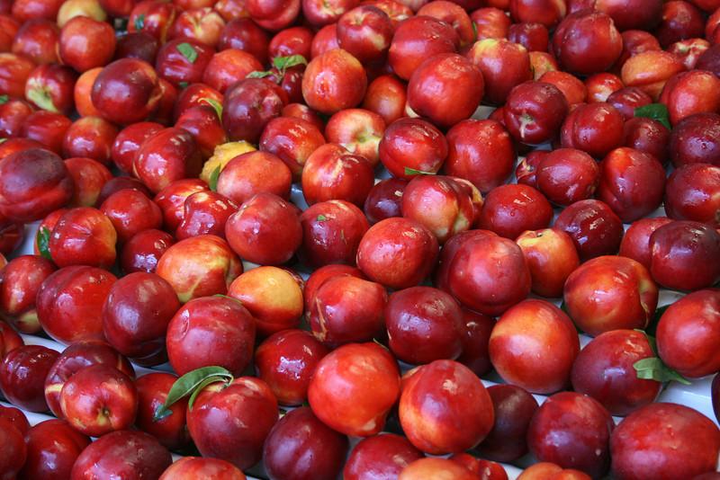 Red Royal Nectarine