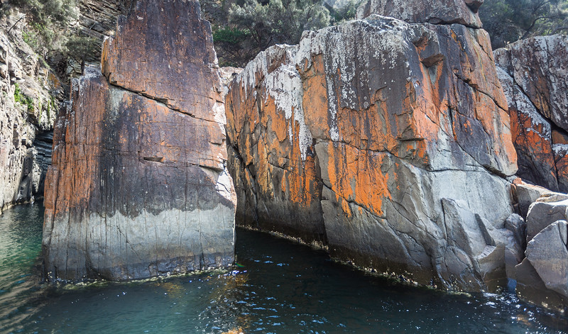 Tasmania_2015_022.jpg
