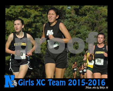 2015-2016 Girls Cross Country