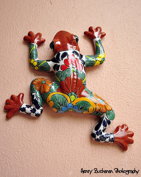 Tatoo Frog